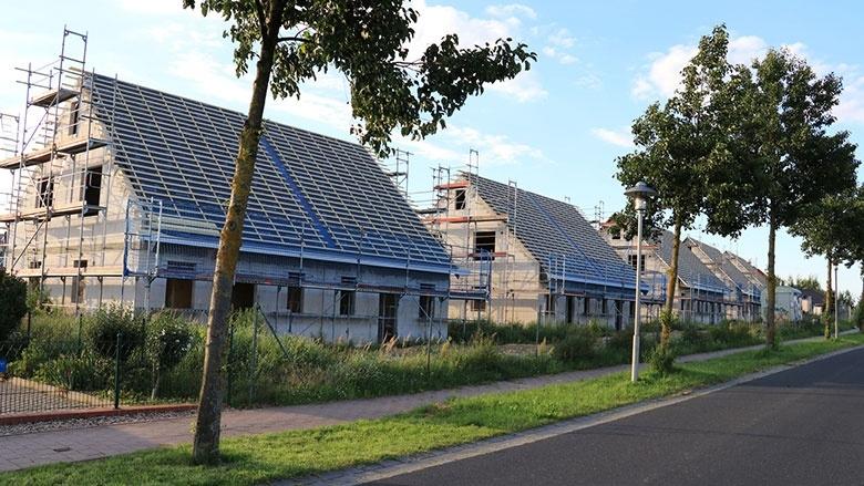 Einzelhaus-Bebauung: Absage an Grüne Ideologie